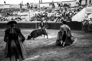 'CAÍDA' — The bull falls on after being speared by the picador.