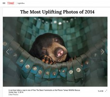 The Most Uplifting Photos of 2014